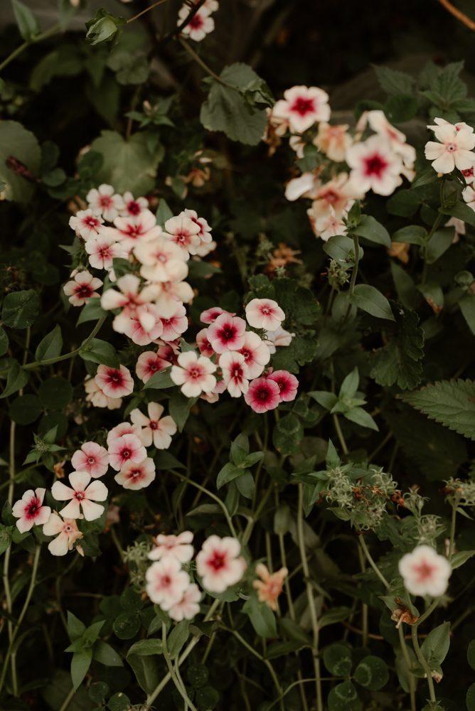 JaunePivoine-fleuristemariage-lyon153