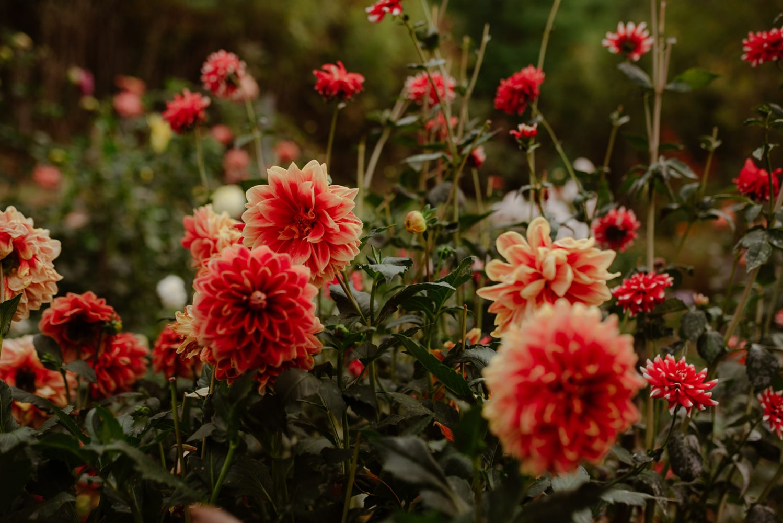 JaunePivoine-fleuristemariage-lyon156